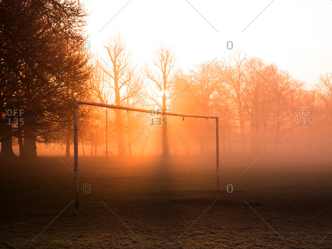 Bare trees and goalpost in misty park at sunrise