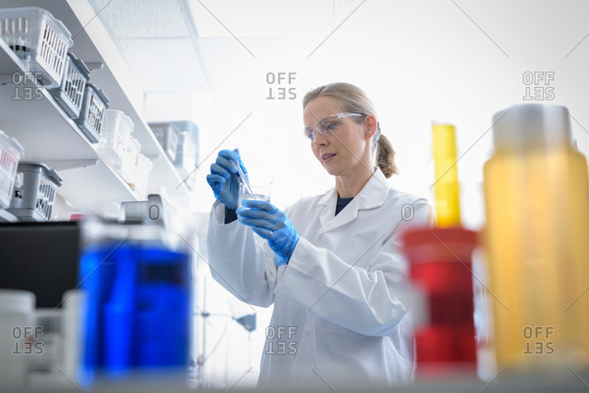 Scientist in laboratory in pharmaceutical factory