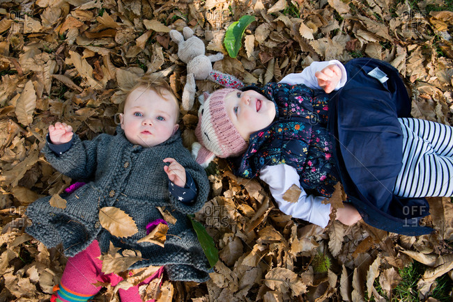 Overhead portrait of female toddler and baby girl lying on autumn leaves in park