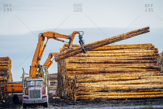 Heavy machinery, moving cut logs