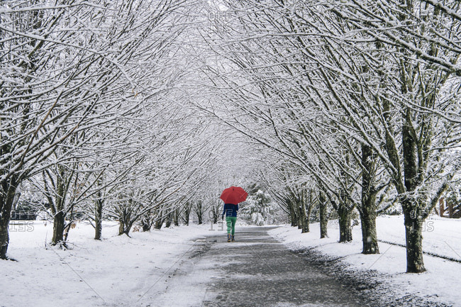Woman walking along path, carrying umbrella, in snow covered rural setting, rear view