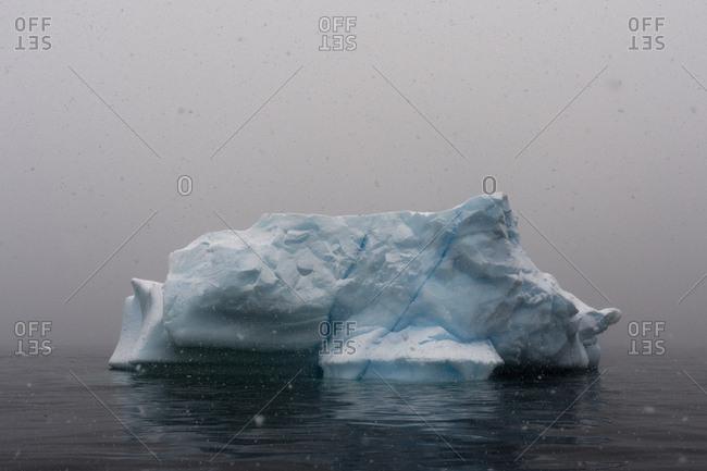 Snowstorm over icebergs in Portal Point, Antarctica