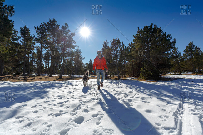 Mature man walking dog in snow covered forest