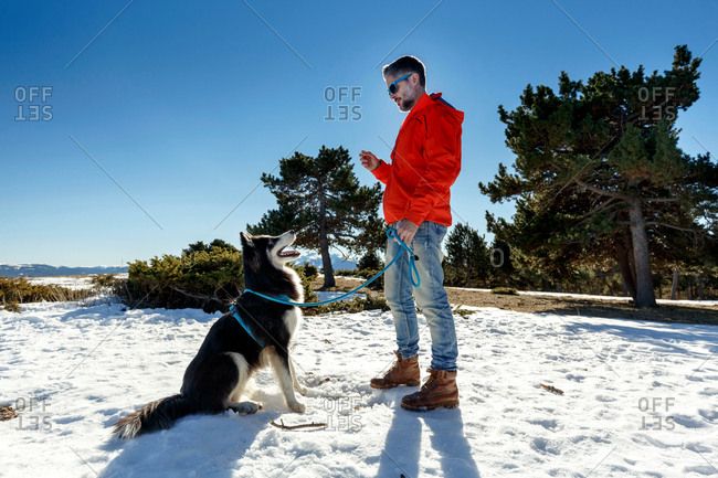 Mature man training dog in snow covered landscape