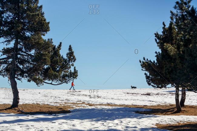 Man walking dog in snow covered horizon