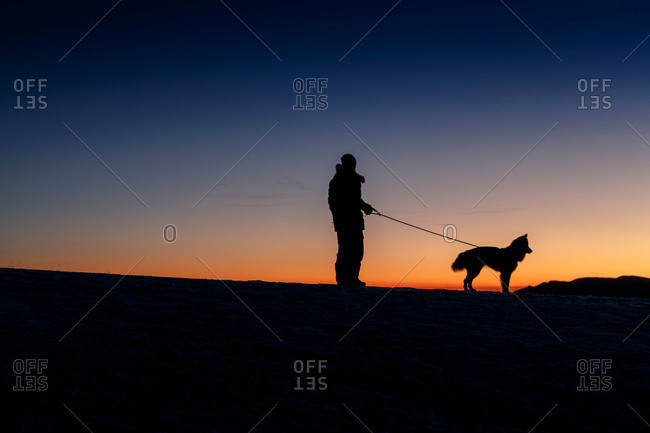 Silhouetted side view of man and dog standing on hill horizon at night