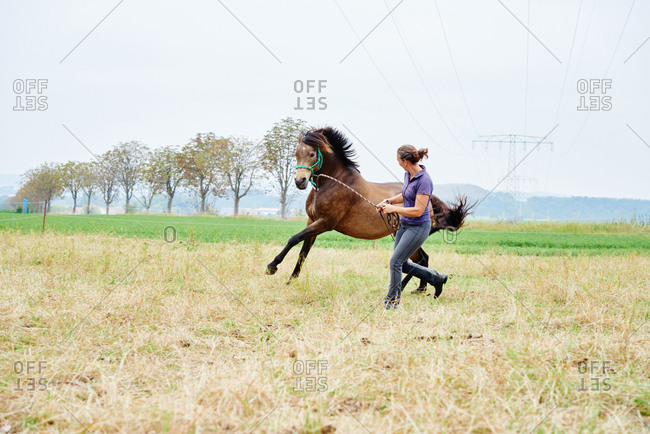 Woman running and leading horse while training in field