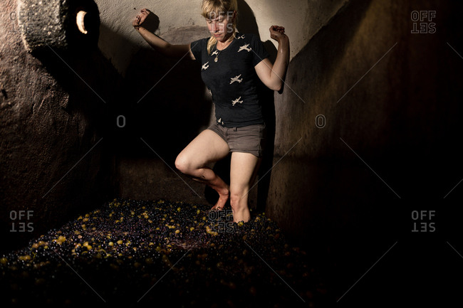 Barefoot woman stamping on grapes in vineyard vat