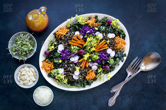 Kale Wild Rice Salad with Blood Orange Vinaigrette served with micro sprouts, sliced almonds and Asiago cheese.  Photographed on a dark blue background.