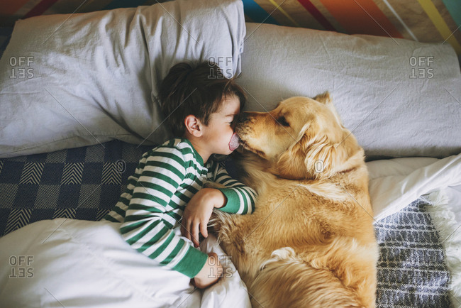 Young boy cuddling with golden retriever dog on a bed in the morning