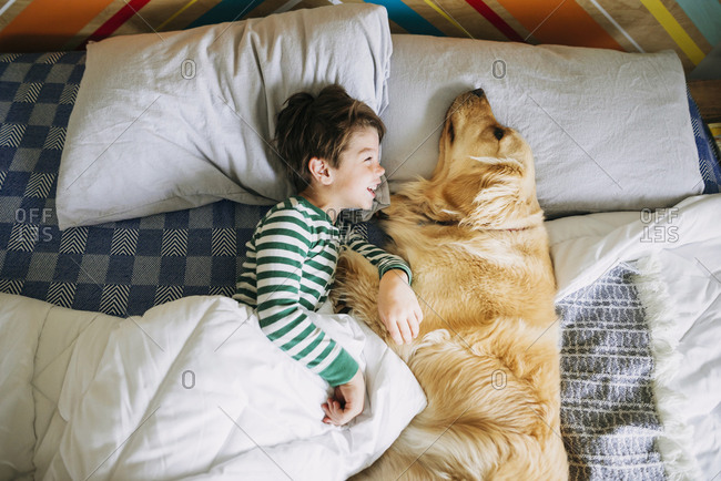 Young boy cuddling with golden retriever dog on a bed