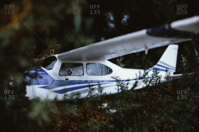 The fallen toy airplane