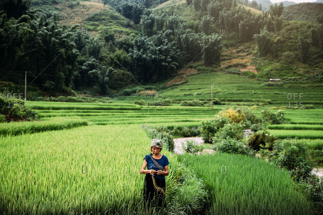 SAPA, VIETNAM - AUGUST 14, 2016: A woman working on green rice fields, on August 14, 2016 in Sapa, Vietnam.
