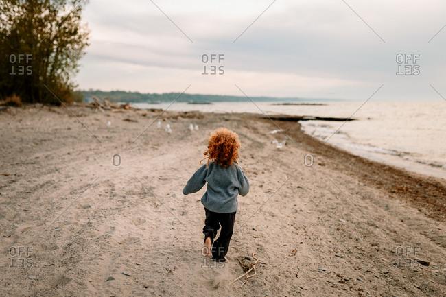 Boy running after seagulls on a beach