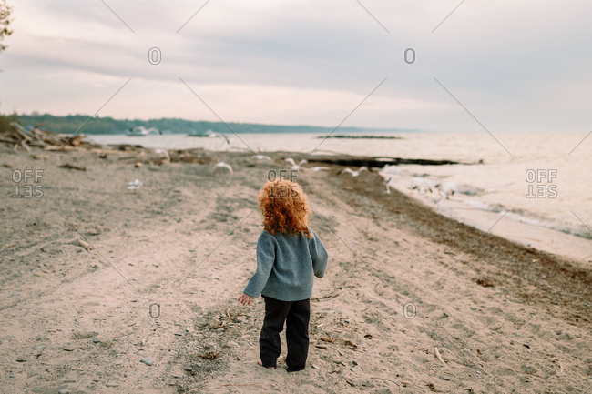 Boy standing on a beach looking at seagulls