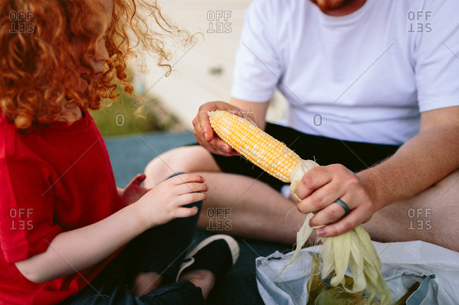 Father and son shucking fresh ears of corn