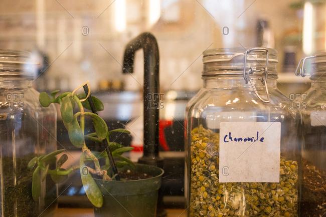 Chamomile tea in glass jar in tea shop
