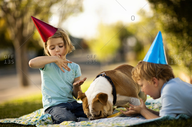 Children in party hats eating with their pet bulldog on a picnic blanket