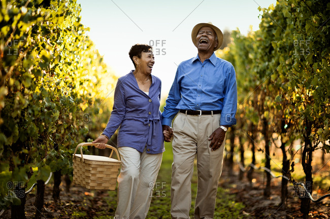 Senior couple with a picnic basket in a vineyard