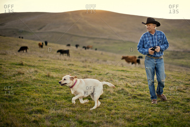 Farmer with his pet Labrador in a paddock