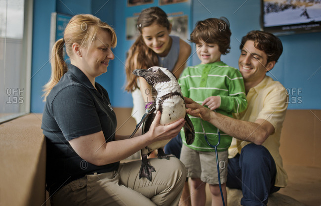 Zoo keeper showing a penguin to a family