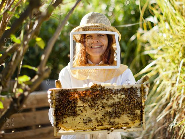 Beekeeper holding honeycomb tray