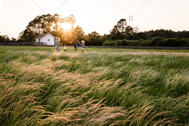 Four siblings walking in a field together at sunset on Bodie Island, North Carolina