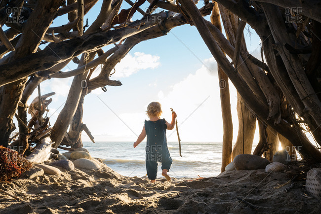 Toddler girl standing beneath an arch of driftwood on a beach