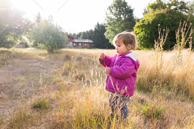 Toddler standing in long grass