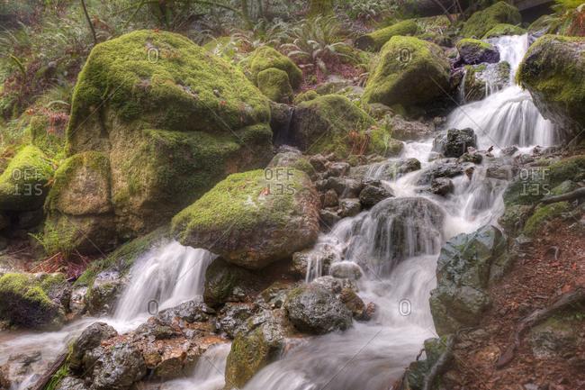 A small cascade in motion blur, California