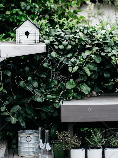 Birdhouse in herb garden setting