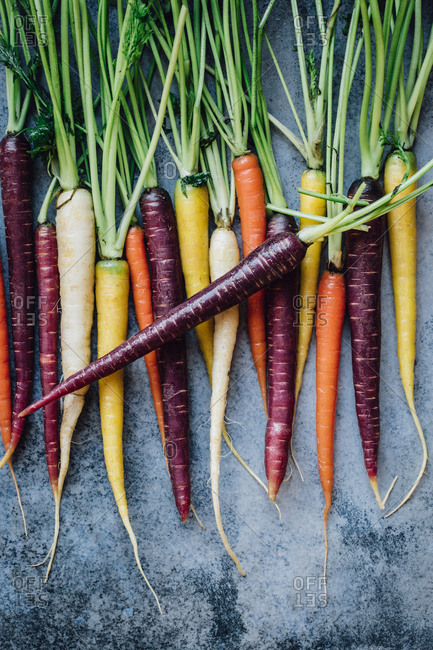 Carrots in various colors