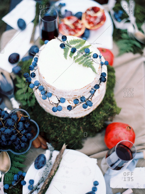 Berries on vine on cake