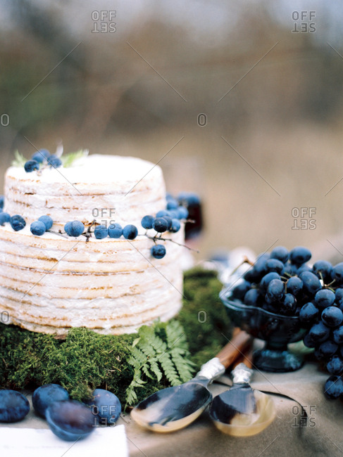 Berries on vines decorating cake