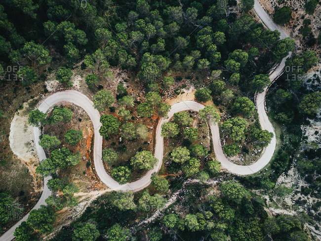 From above curved road in green forest
