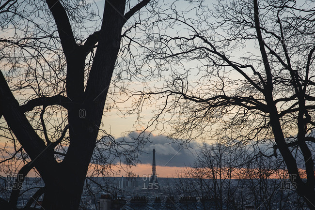 View to the Eifel tower through the branches Horizontal outdoors shot