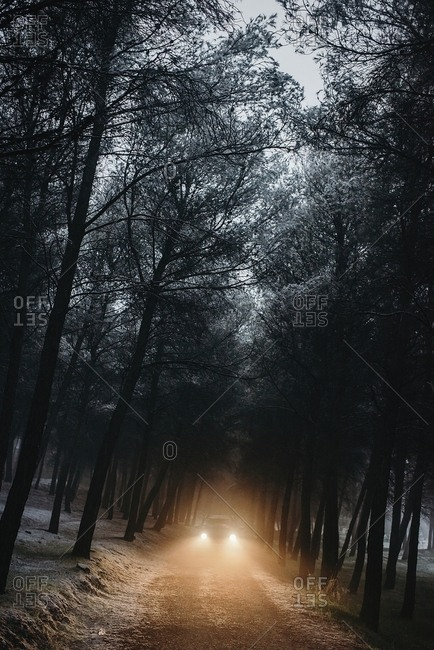 Outdoors shot of car being driven through the dark forest