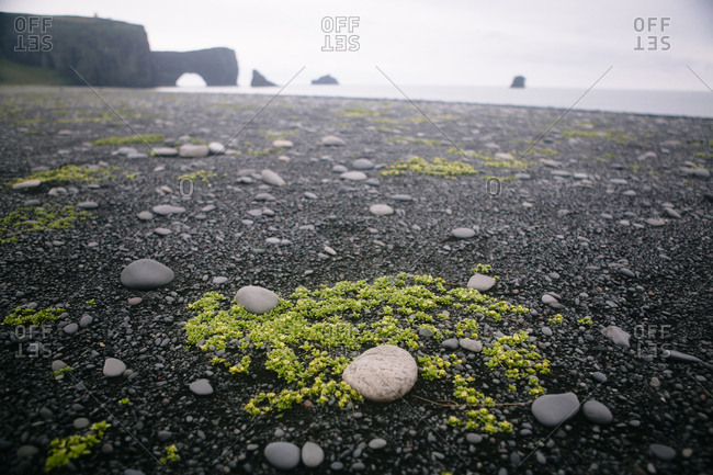 Wide angle of stones and moss on black sand beach in Vik Iceland