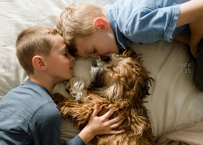 Boys sleeping with a dog