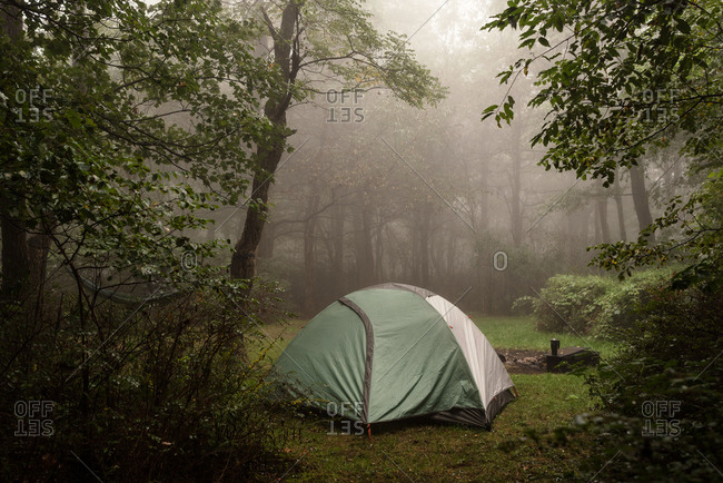 Campsite in a foggy clearing