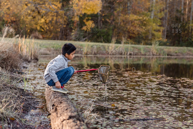 Boy fishing with net in autumn lake