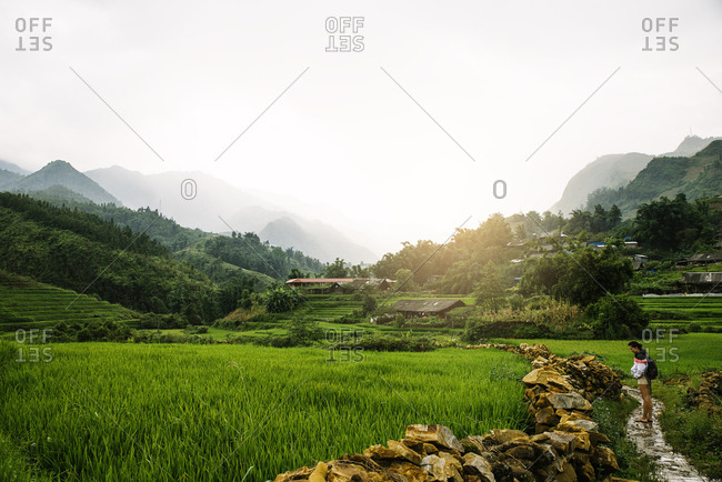 Woman in the rice fields of Sapa, Vietnam