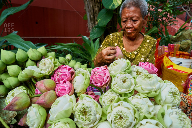 Phnom Penh, Cambodia - January 7, 2017: Elderly woman folding lotus flowers to sell at market in Wat Phnom
