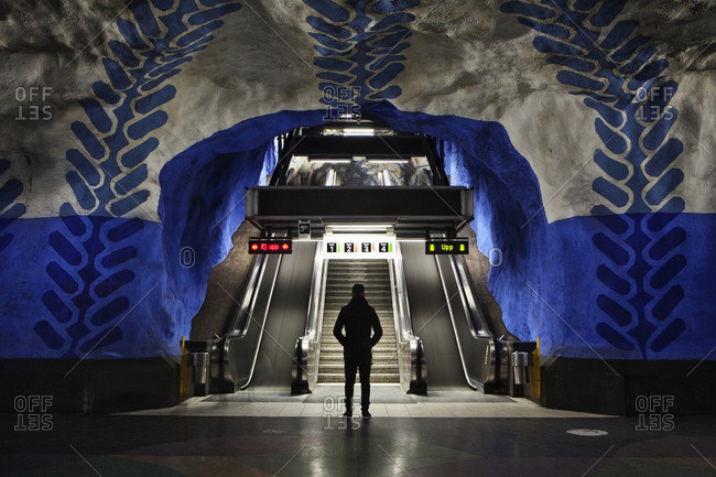 Stockholm, Sweden - January 15, 2014: Underground art in the Stockholm Metro, the so called Tunnelbana