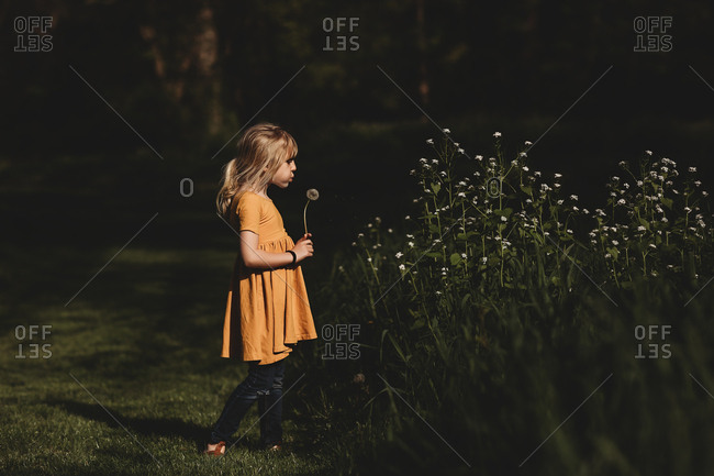 Girl blowing on dandelion plant