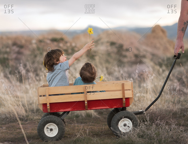 Boys in wagon in a field
