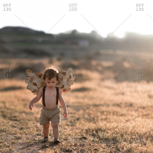 Boy walking in field with wings