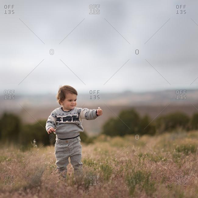 Toddler boy holding flower in field