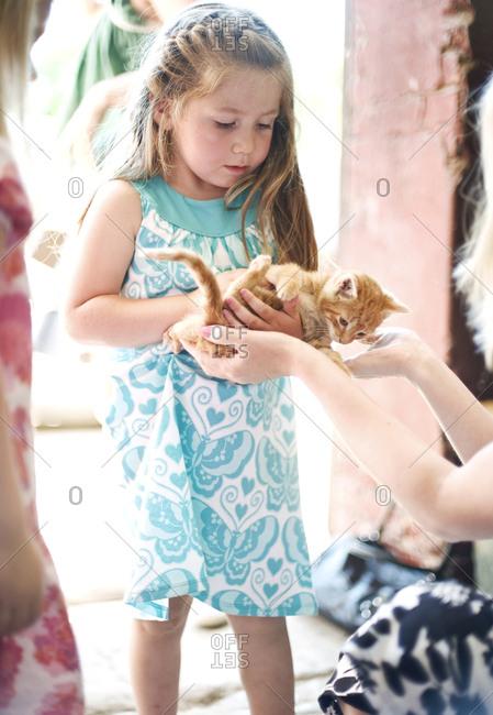 Girl holding kitten - Offset Collection