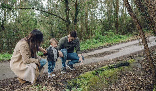 Family with little boy in forest in autumn